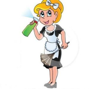 Website of Cleaning Maid Simple