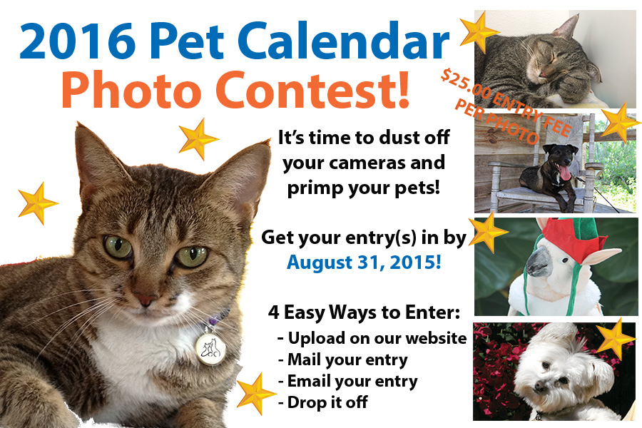 Calendar Photography Submissions : Pet calendar photo contest englewood chamber