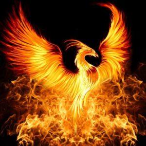 Website of Project Phoenix Inc