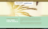 Website of Four Pillars Financial Planning Group-Raymond James