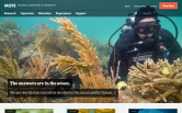 Website of Mote Marine Laboratory & Aquarium